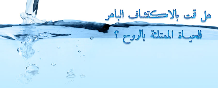 Have You Made The Wonderful Discover Of Spirit Filled Life In Arabic