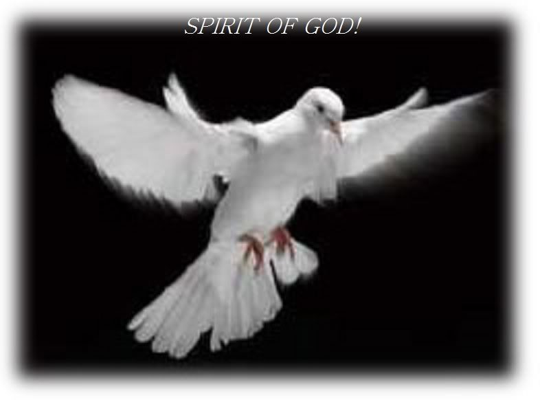 The Holy Spirit is our Counselor!
